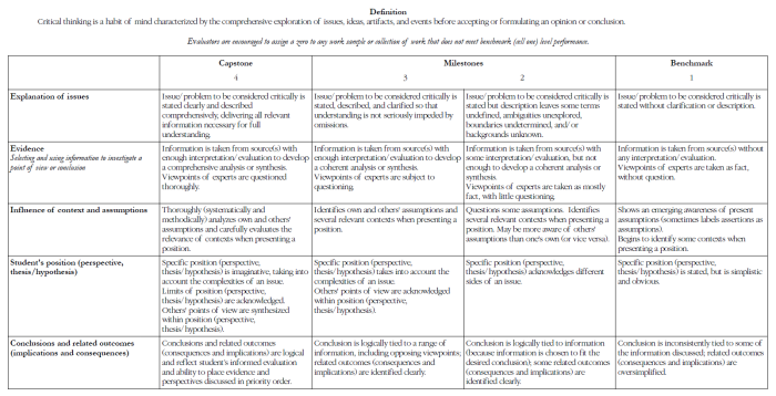 Critical thinking grading rubric