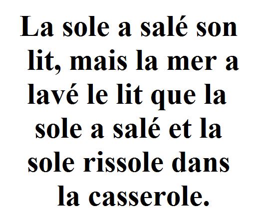 Image result for la sole a salé son lit virelangue